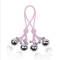 SM情趣乳夹性玩具内衣配饰乳头刺激乳头铃铛情趣用品捆绑女用器具