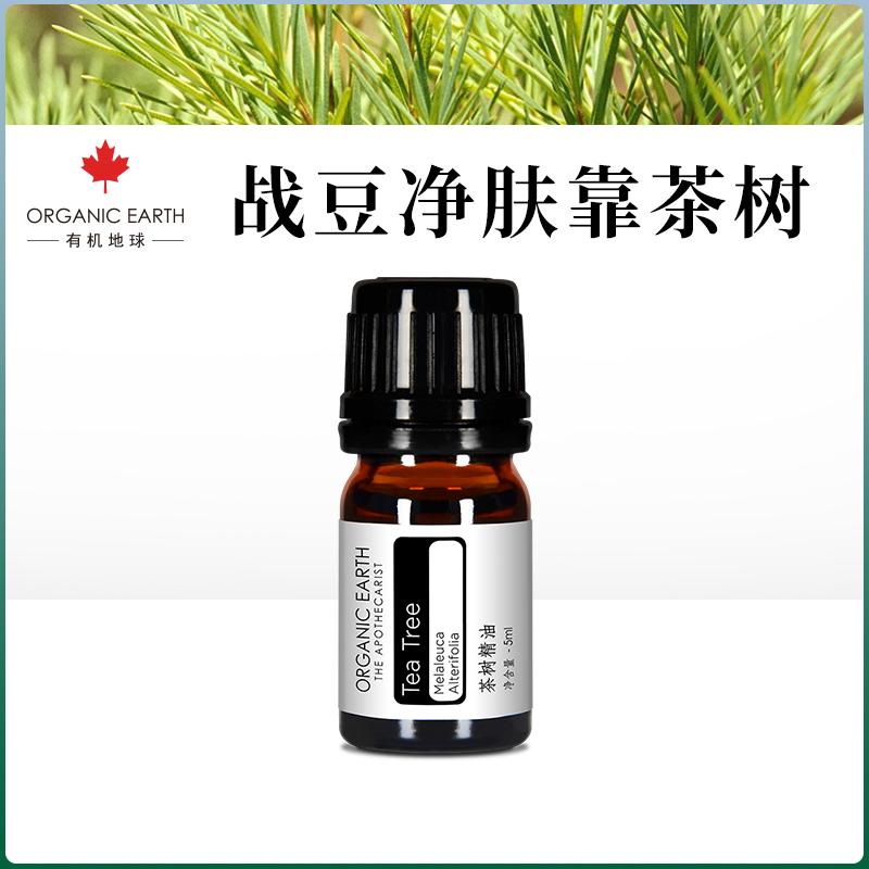有机认证澳洲茶树精油天然单方精油